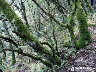 Las Médulas - Valle del Silencio - Herrería de Compludo;consejos para hacer senderismo singles en